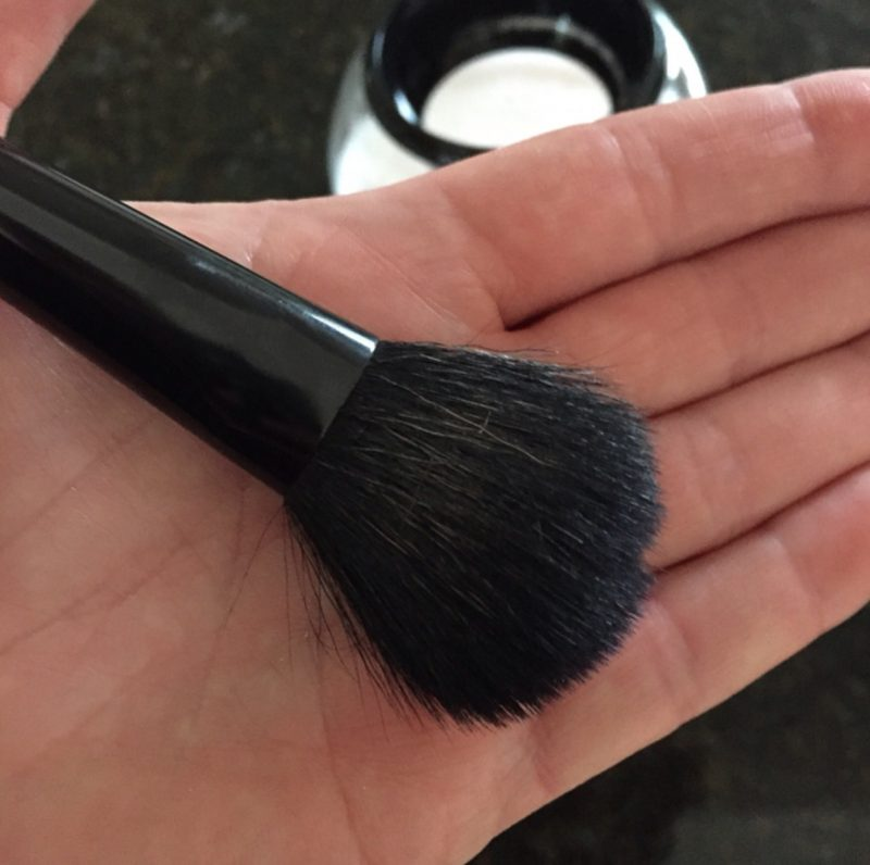 Clean AND Dry Makeup Brush In Under 30 Seconds!